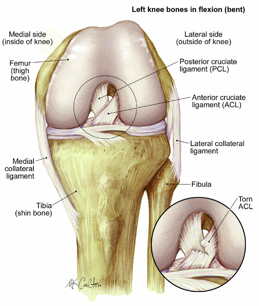 Auburn Hills Knee Injury Care